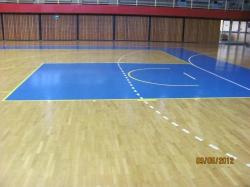 Lauber Dezső Pécsi Városi Sportcsarnok
